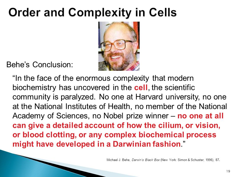 Order and Complexity in Cells