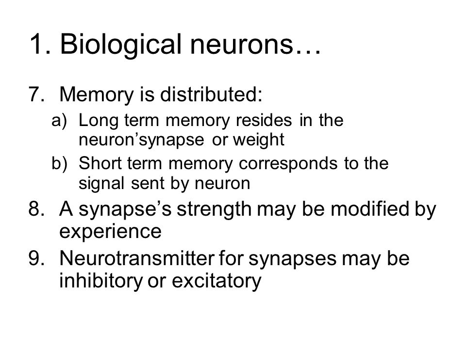 1. Biological neurons… Memory is distributed:
