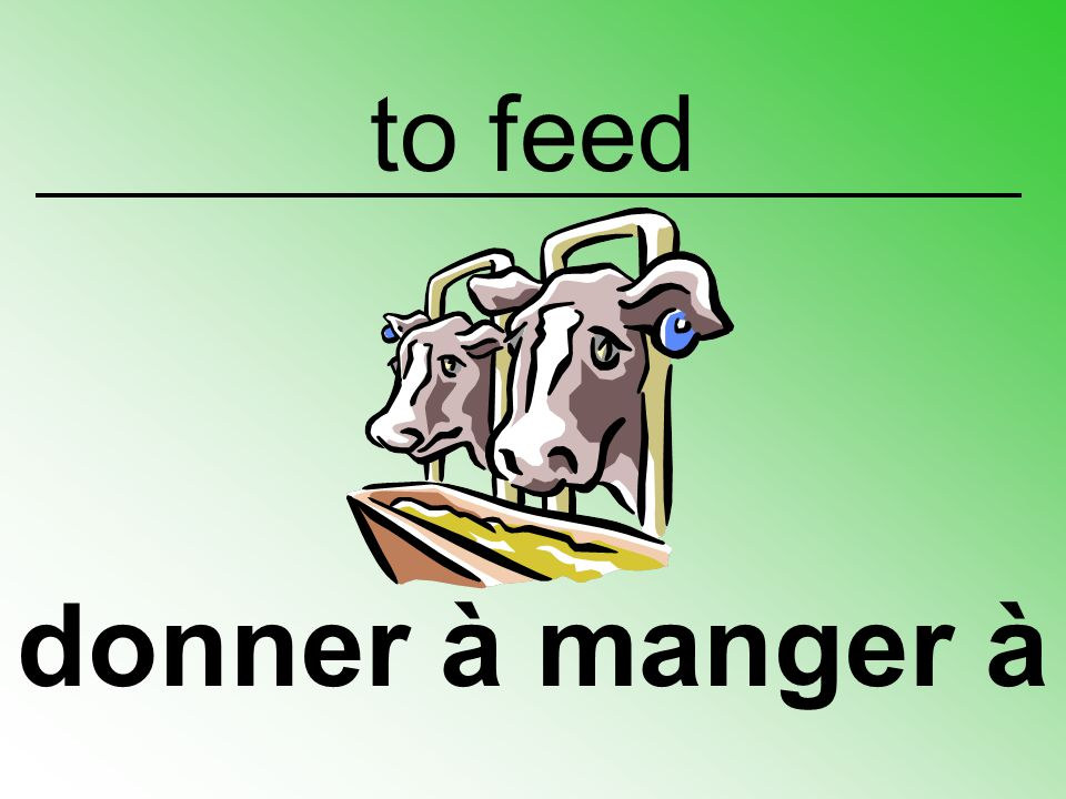 to feed donner à manger à