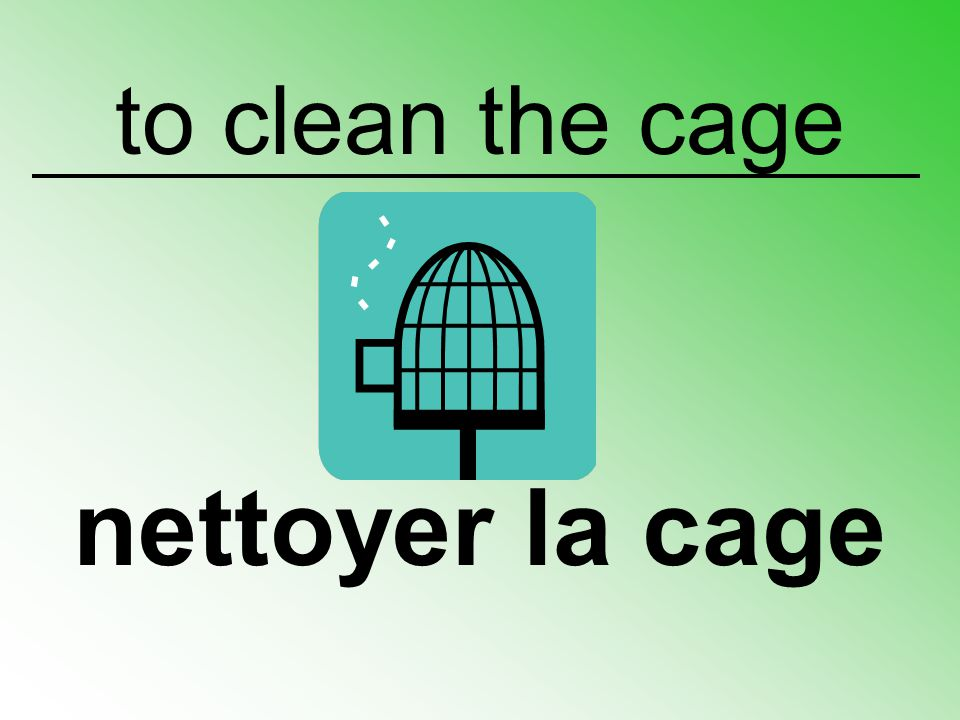 to clean the cage nettoyer la cage