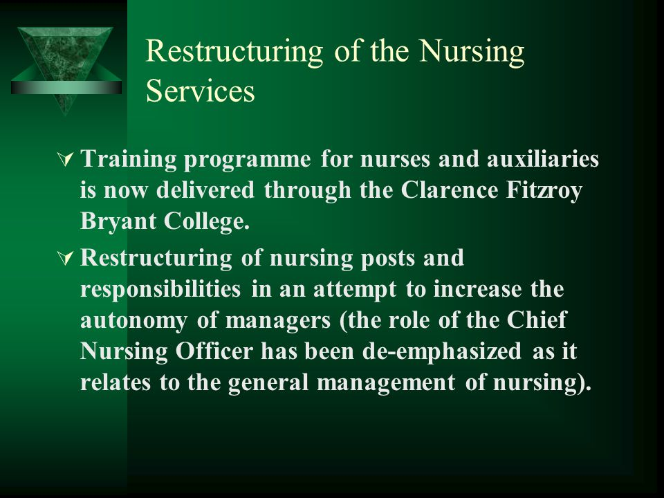 Restructuring of the Nursing Services