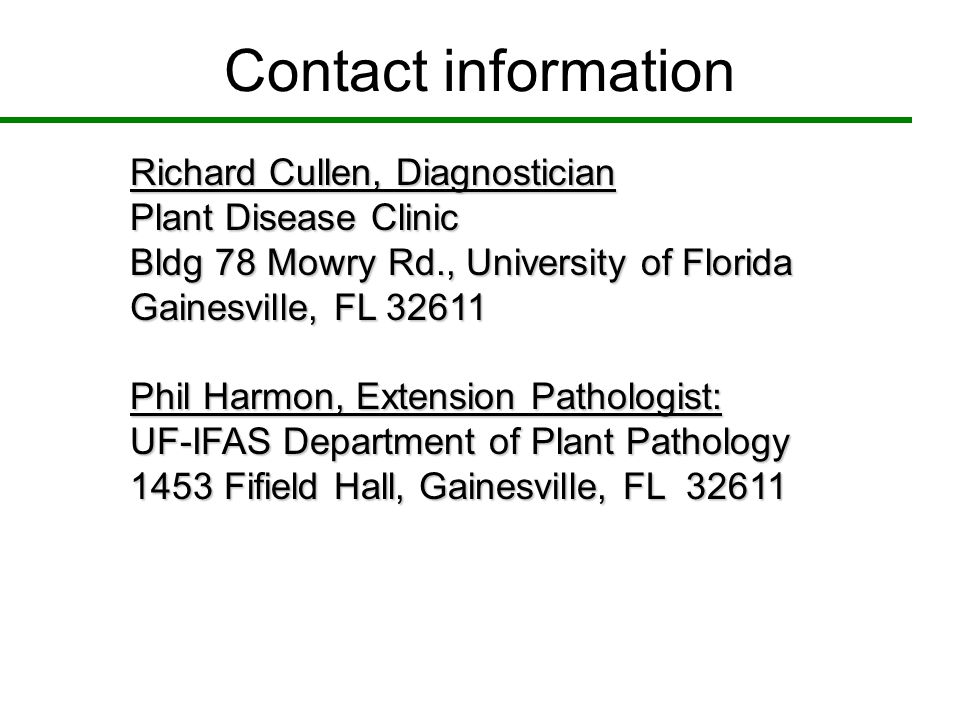 Contact information Richard Cullen, Diagnostician. Plant Disease Clinic. Bldg 78 Mowry Rd., University of Florida.