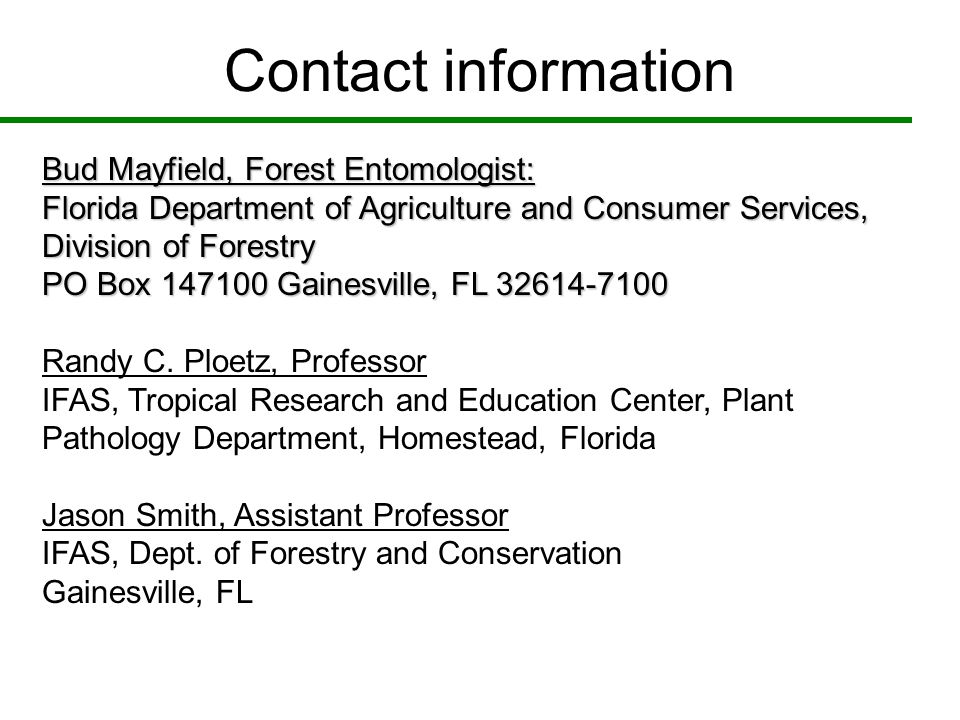 Contact information Bud Mayfield, Forest Entomologist: Florida Department of Agriculture and Consumer Services, Division of Forestry.