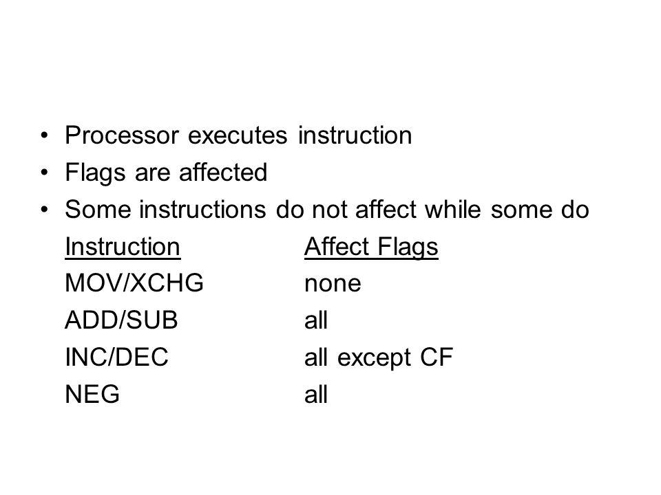 Processor executes instruction