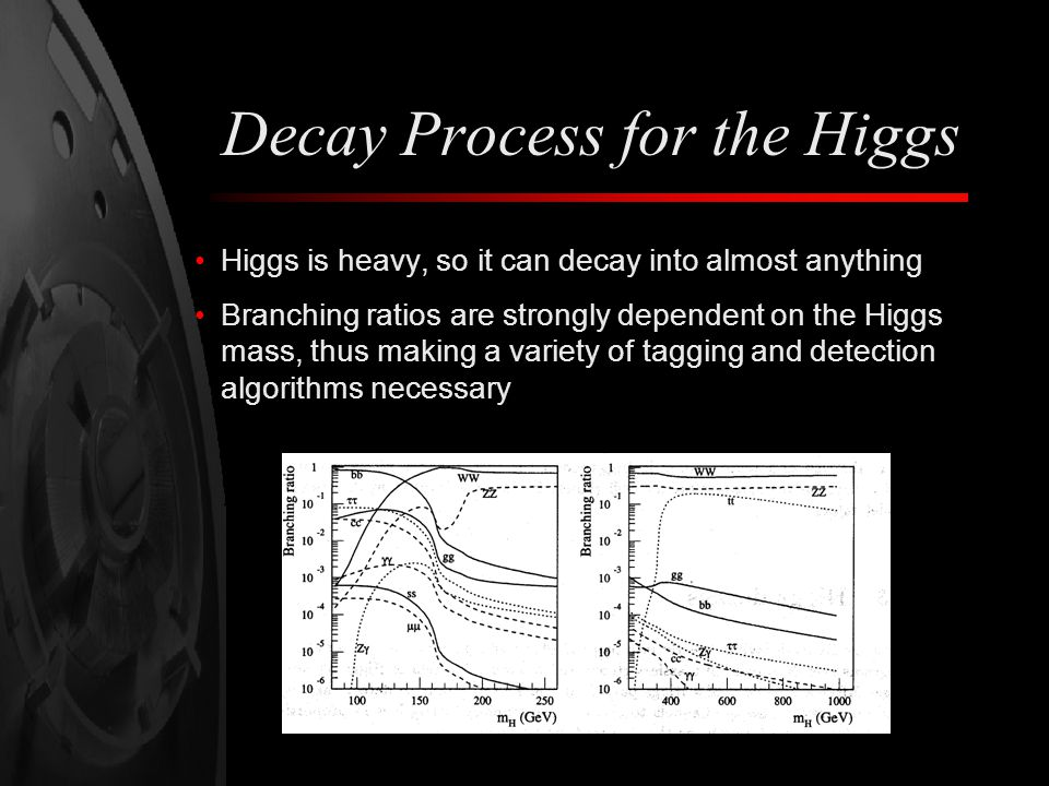 Decay Process for the Higgs