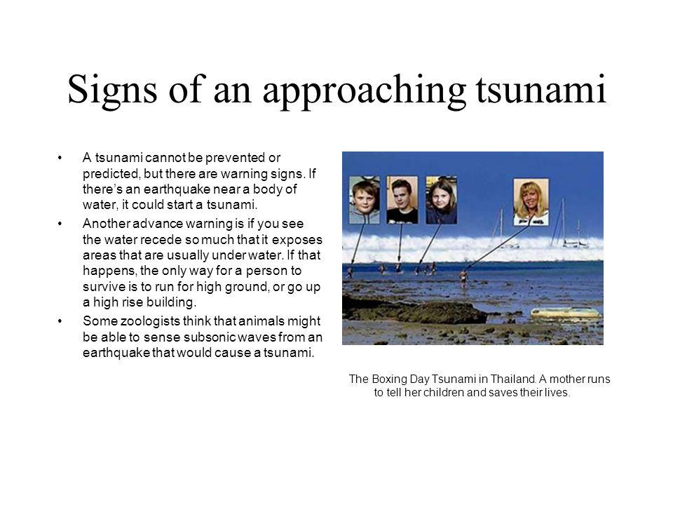 Signs of an approaching tsunami