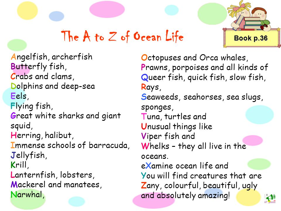 The A to Z of Ocean Life Angelfish, archerfish