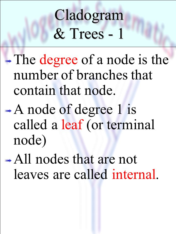 * 07/16/96. Cladogram & Trees - 1. The degree of a node is the number of branches that contain that node.