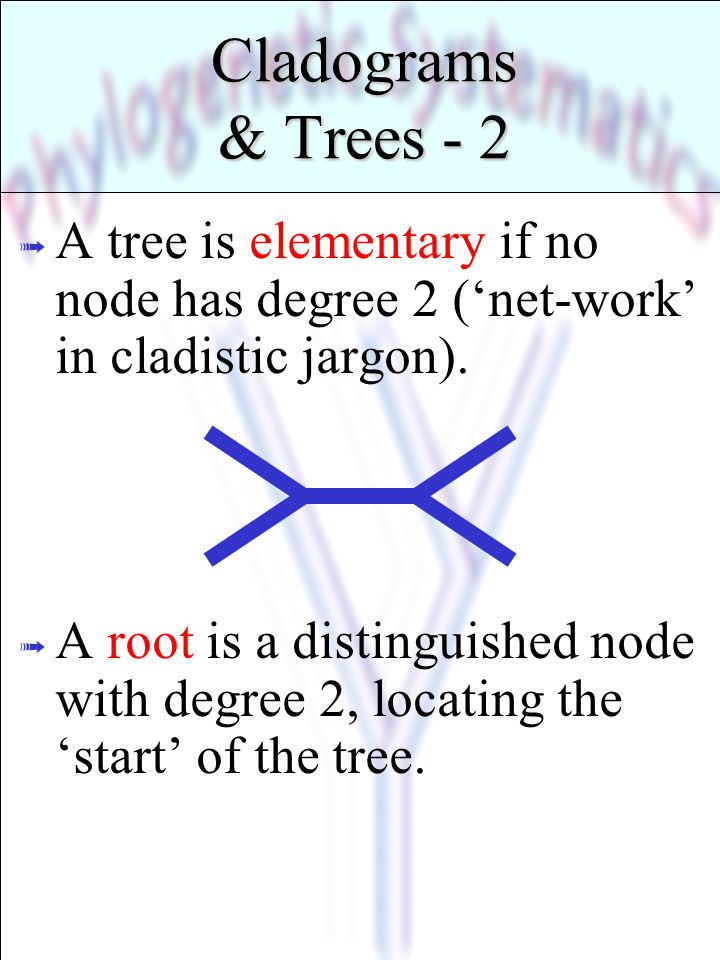 * 07/16/96. Cladograms & Trees - 2. A tree is elementary if no node has degree 2 ('net-work' in cladistic jargon).