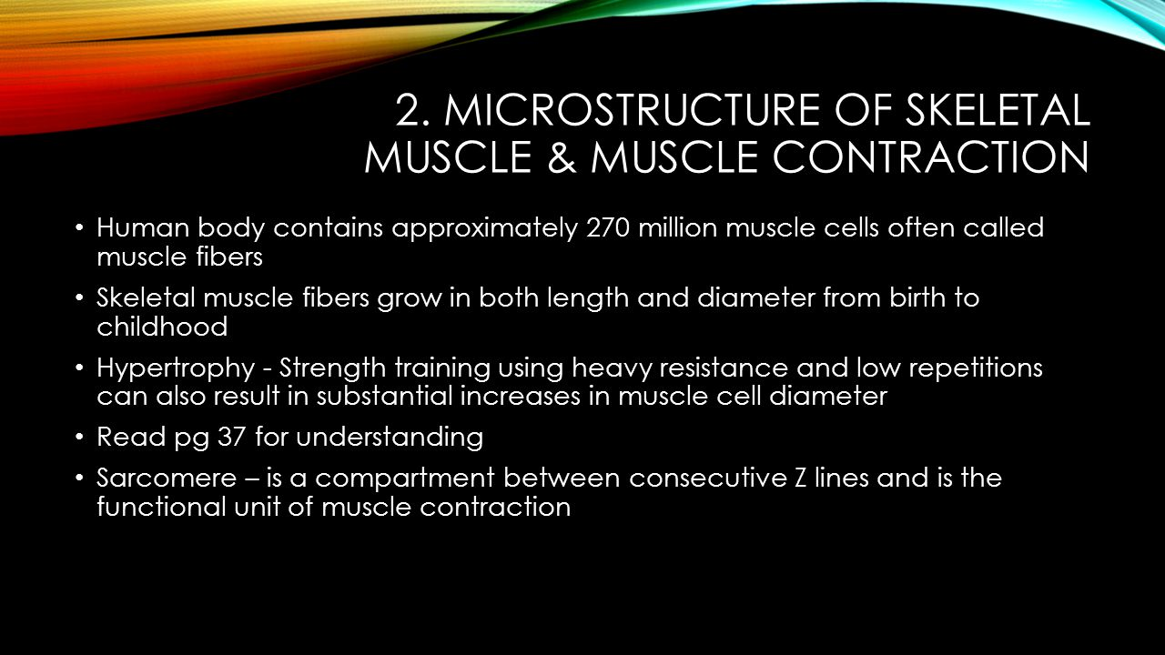 2. Microstructure of Skeletal Muscle & Muscle Contraction