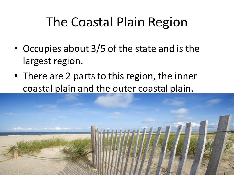 The Coastal Plain Region