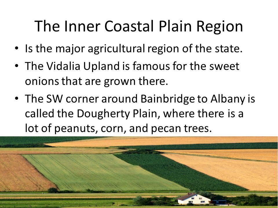 The Inner Coastal Plain Region