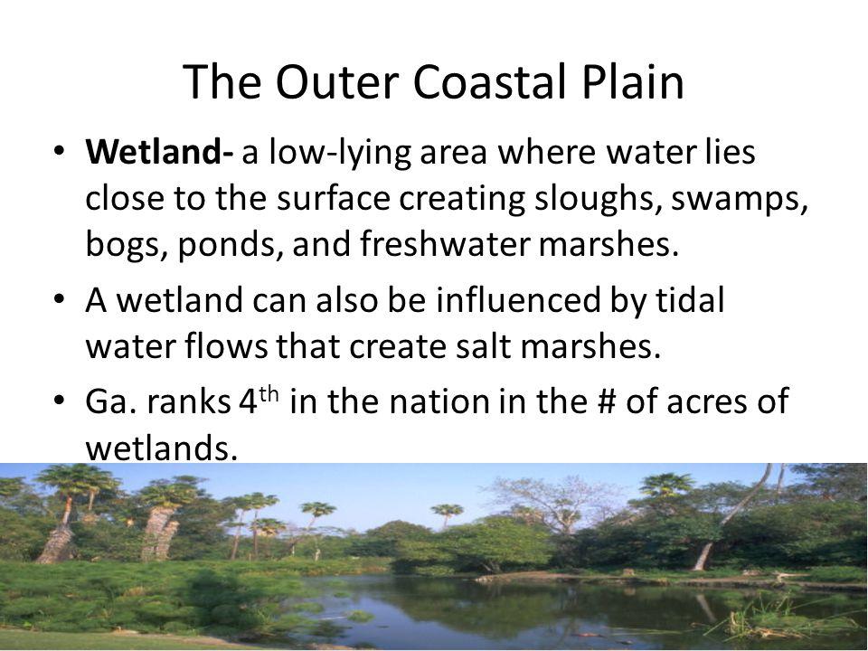 The Outer Coastal Plain