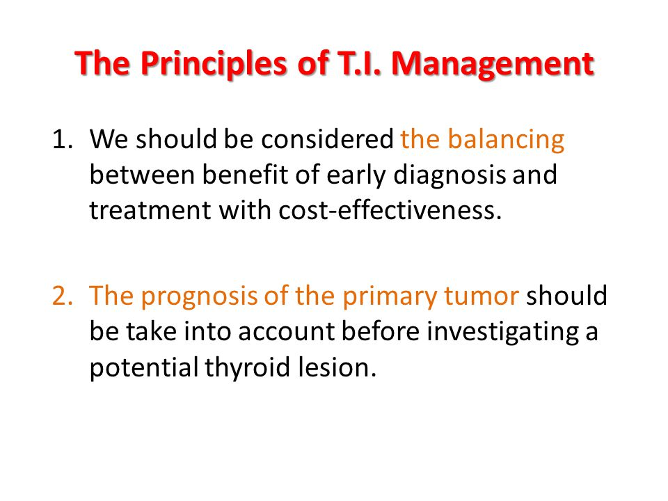 The Principles of T.I. Management