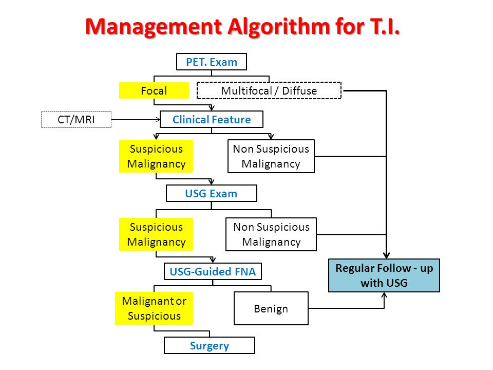 Management Algorithm for T.I. Regular Follow - up with USG