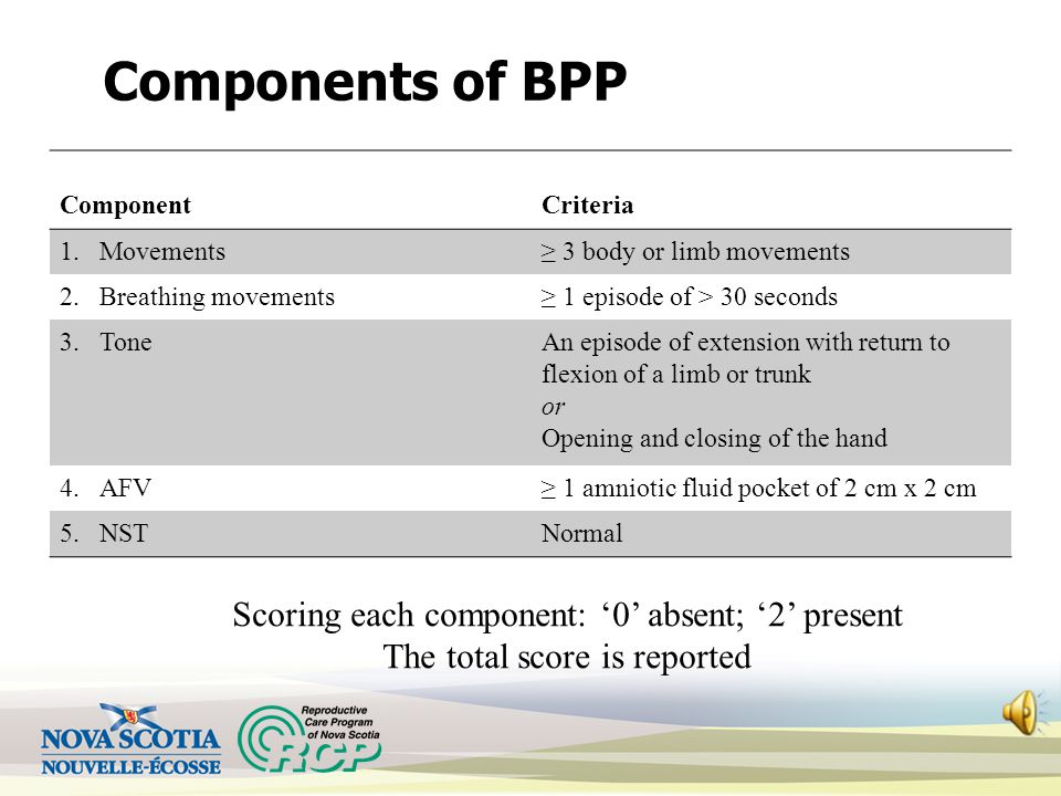 Components of BPP Scoring each component: '0' absent; '2' present