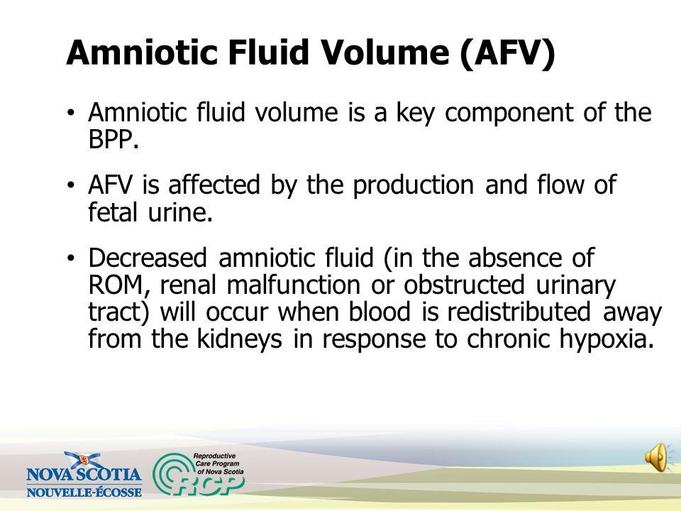 Amniotic Fluid Volume (AFV)