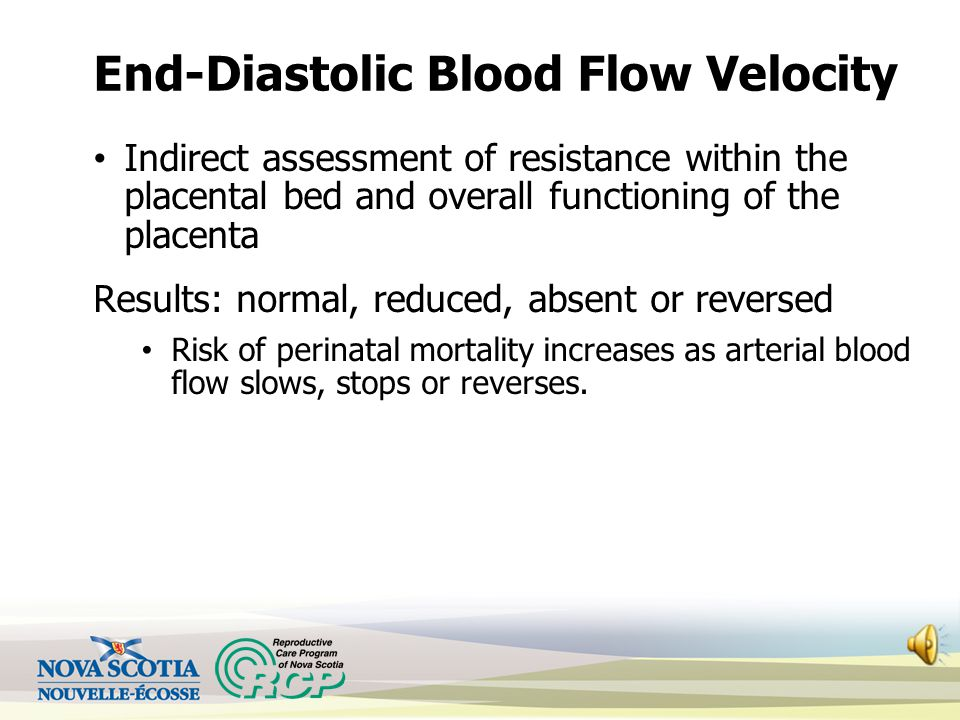 End-Diastolic Blood Flow Velocity