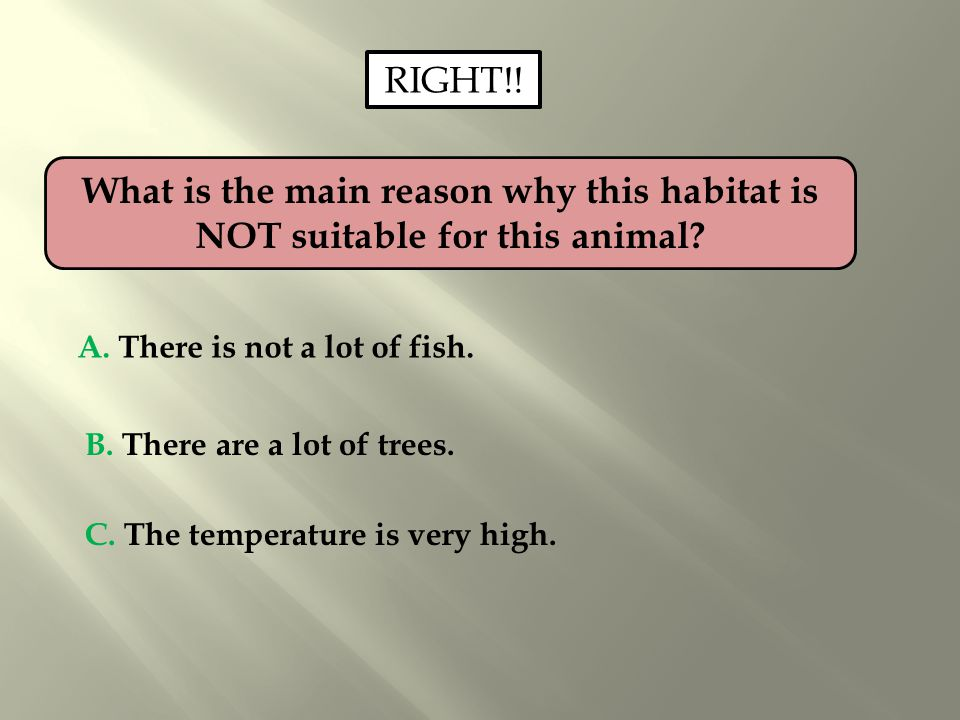 RIGHT!! What is the main reason why this habitat is NOT suitable for this animal A. There is not a lot of fish.