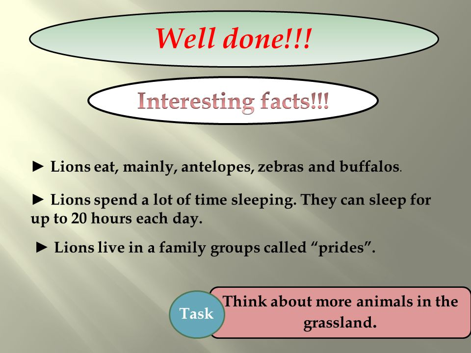 Think about more animals in the grassland.
