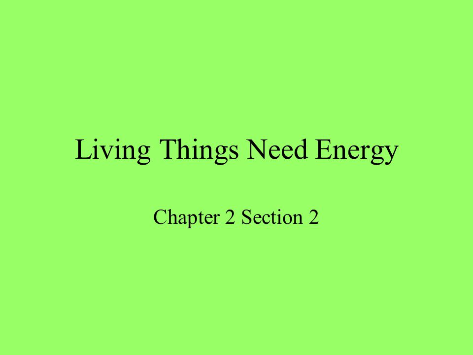 Living Things Need Energy