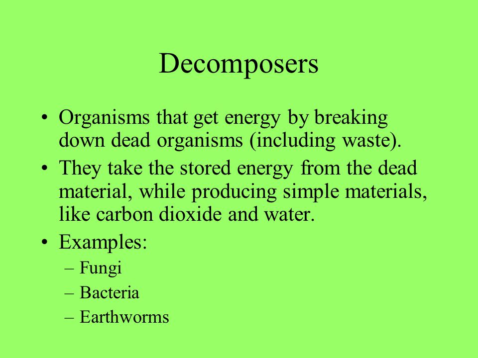 Decomposers Organisms that get energy by breaking down dead organisms (including waste).