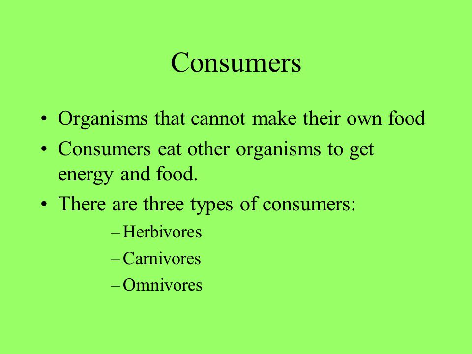 Consumers Organisms that cannot make their own food