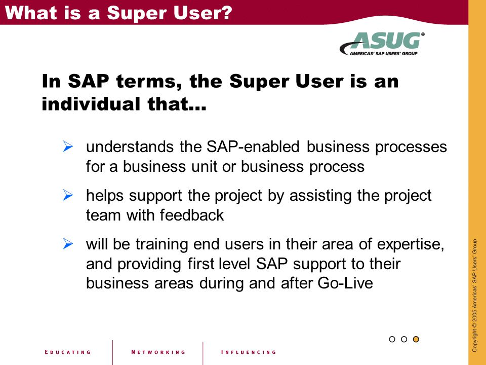 In SAP terms, the Super User is an individual that…