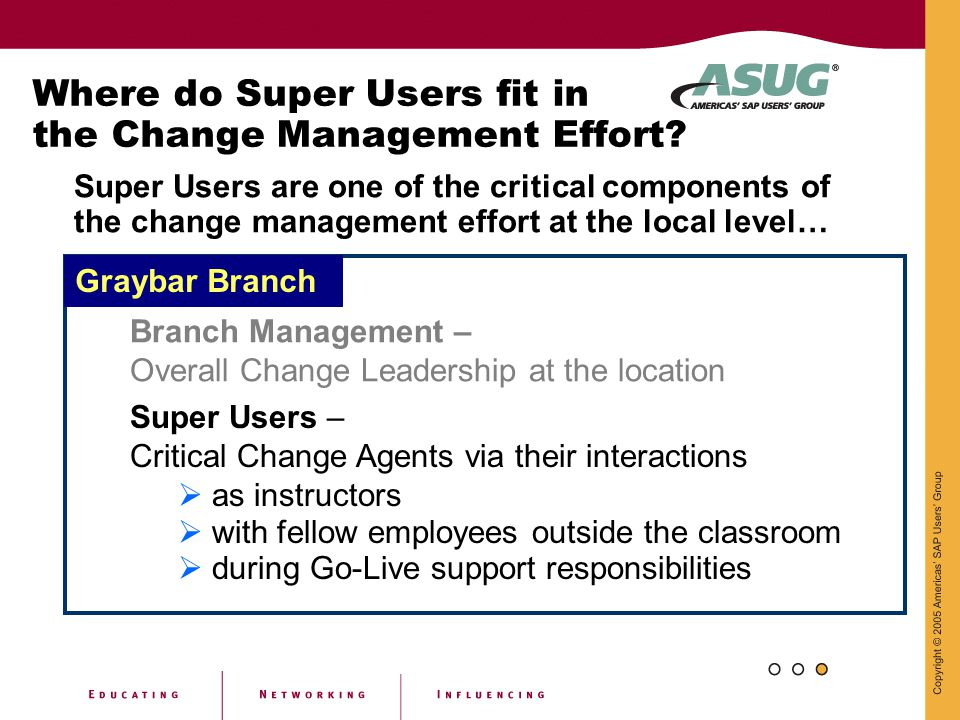 Where do Super Users fit in the Change Management Effort