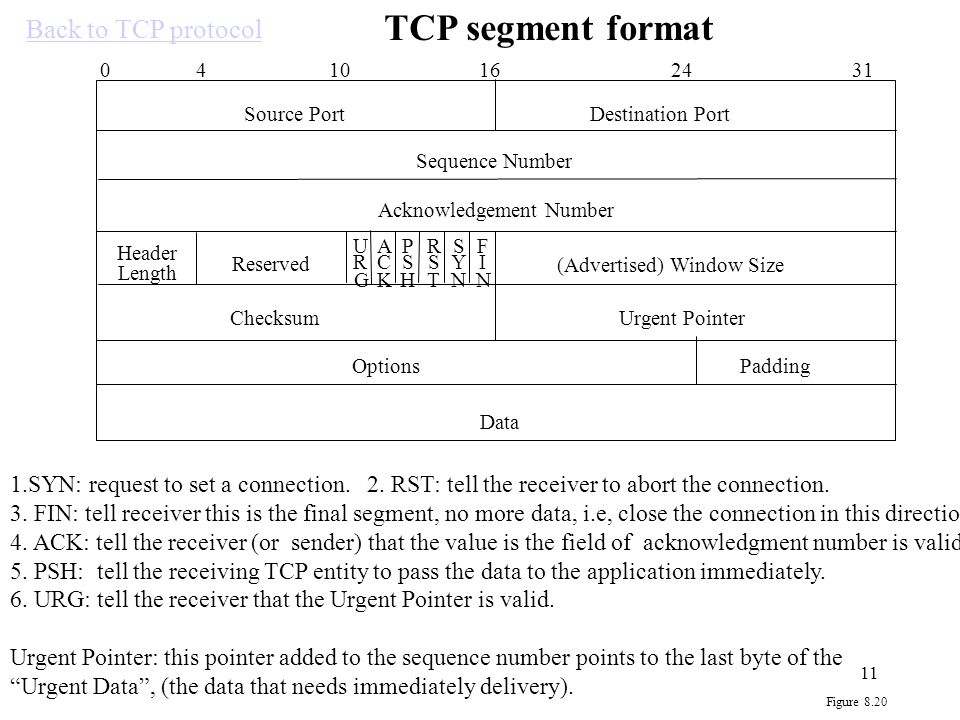 TCP segment format Back to TCP protocol