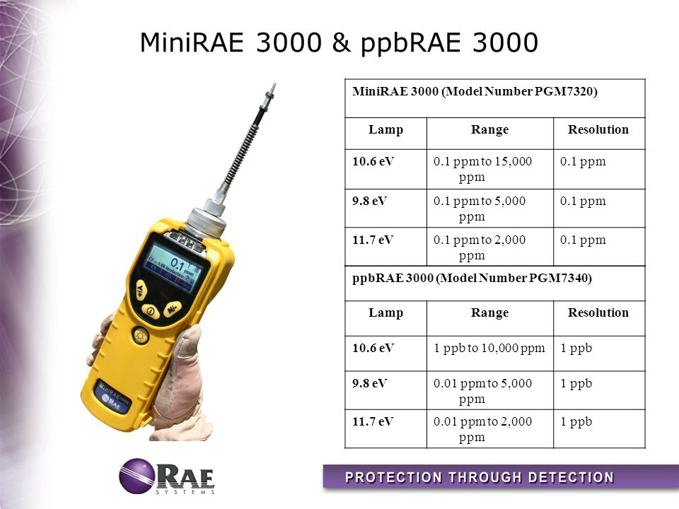 MiniRAE 3000 & ppbRAE 3000 MiniRAE 3000 (Model Number PGM7320) Lamp