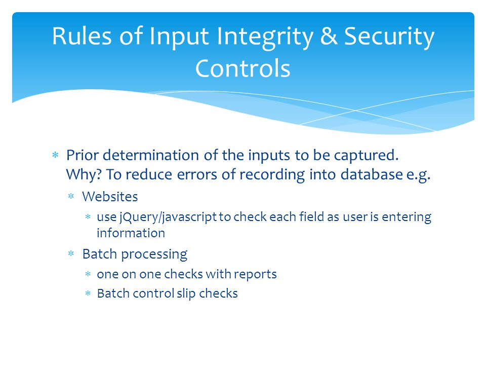 Rules of Input Integrity & Security Controls