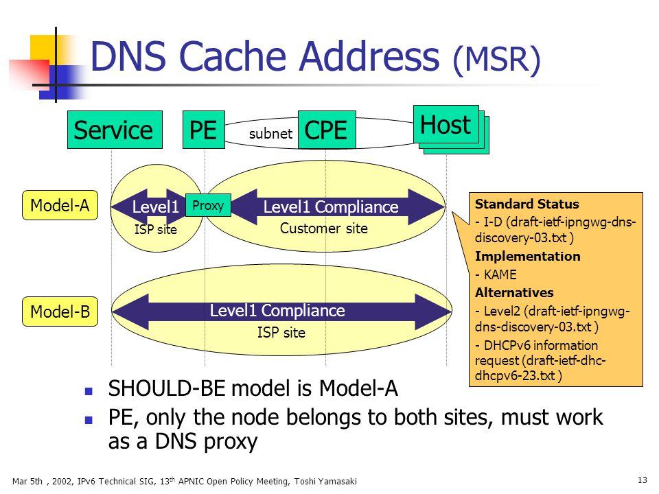 DNS Cache Address (MSR)