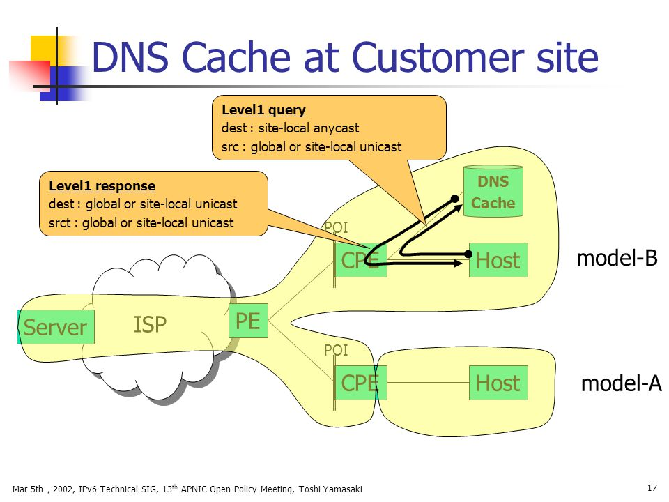 DNS Cache at Customer site