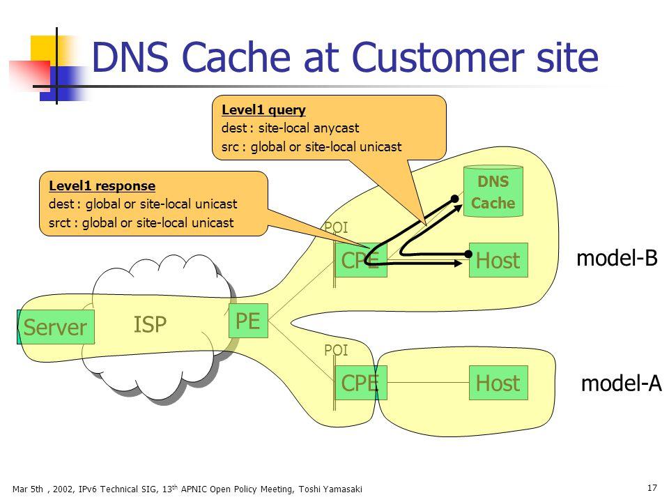 DNS Cache at Customer site