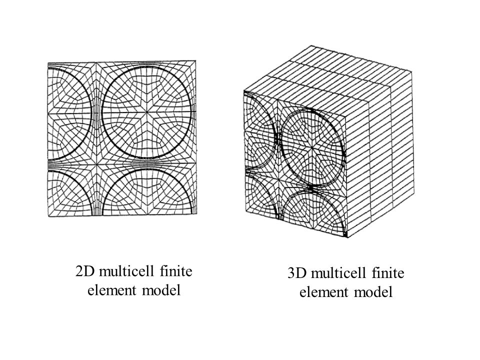 2D multicell finite element model 3D multicell finite element model