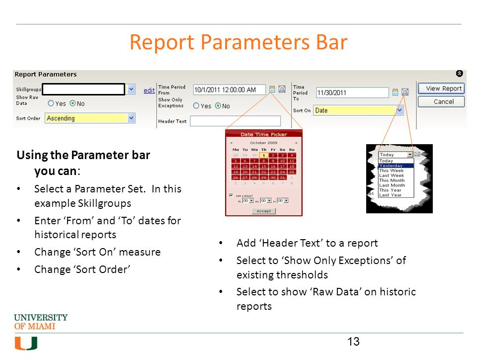 Report Parameters Bar Using the Parameter bar you can: