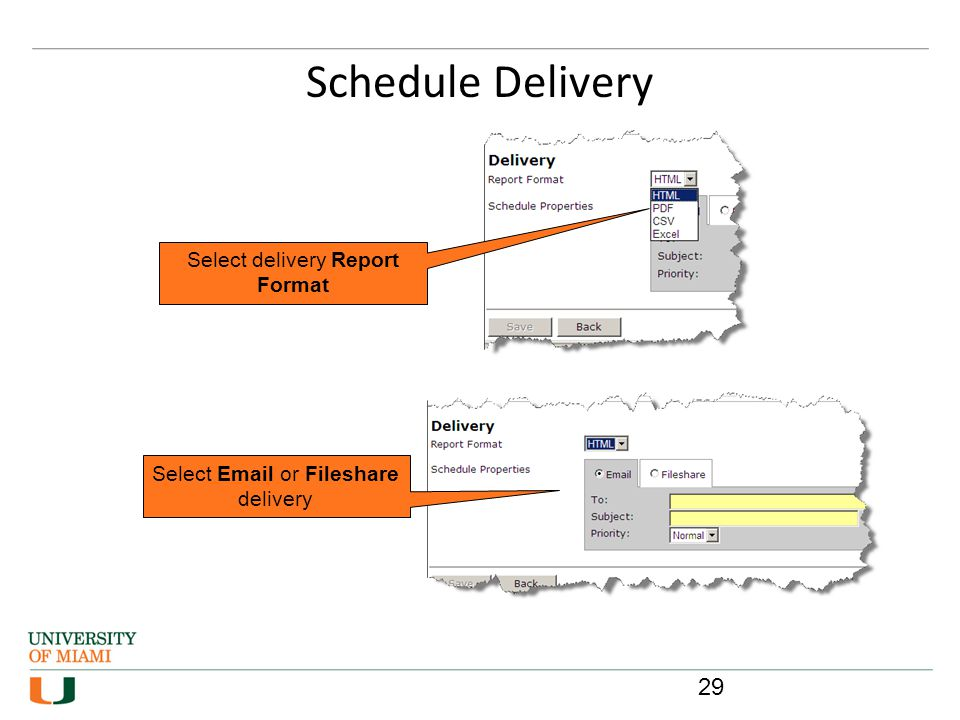 Schedule Delivery Select delivery Report Format