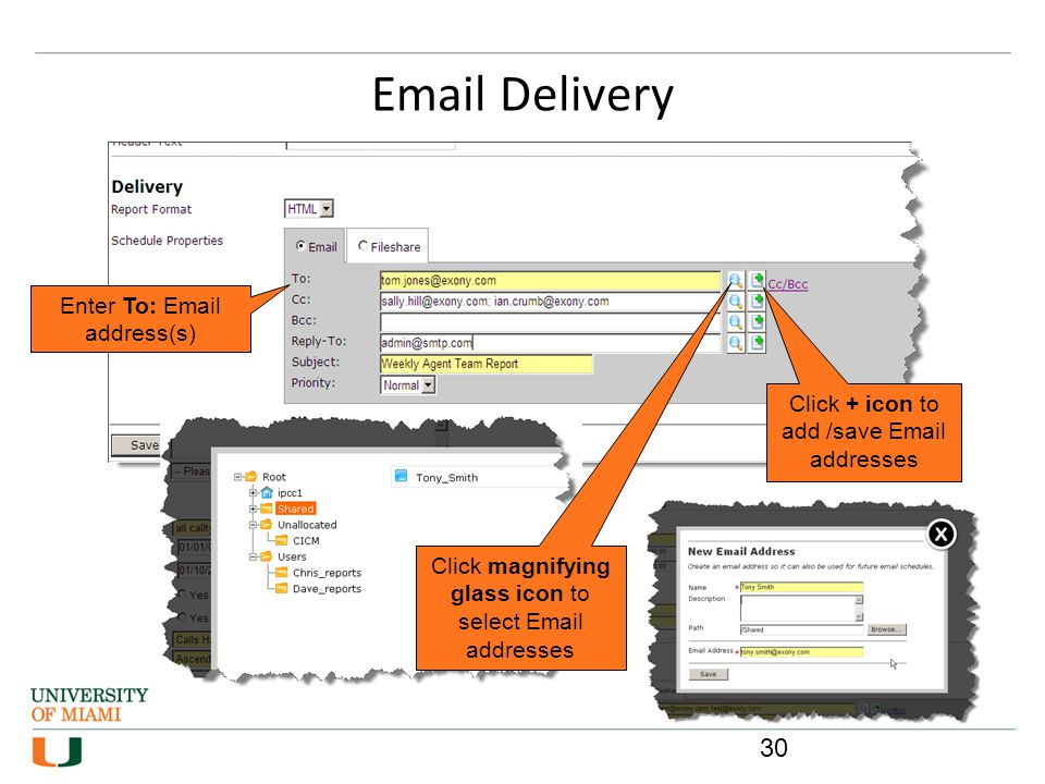 Email Delivery Enter To: Email address(s)