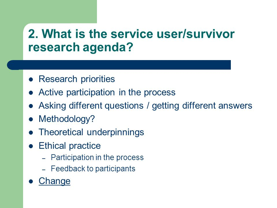 2. What is the service user/survivor research agenda