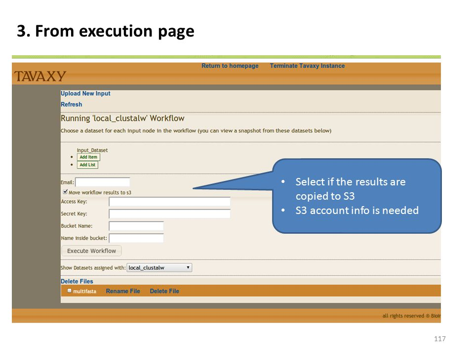 3. From execution page Select if the results are copied to S3