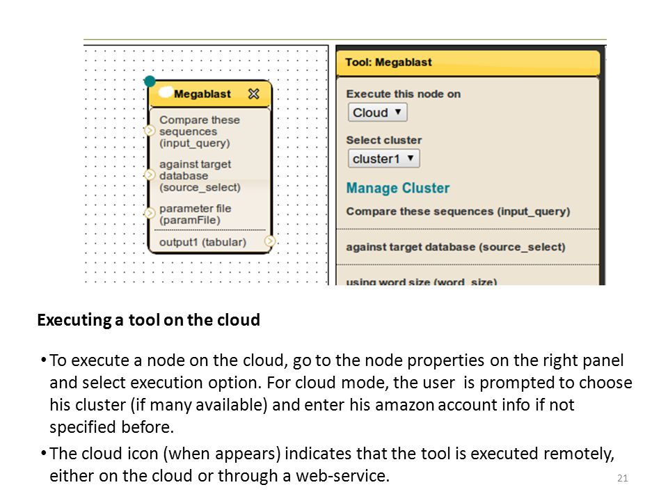 Executing a tool on the cloud