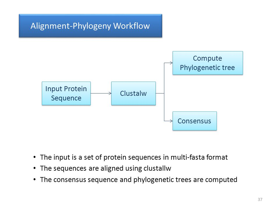 Input Protein Sequence