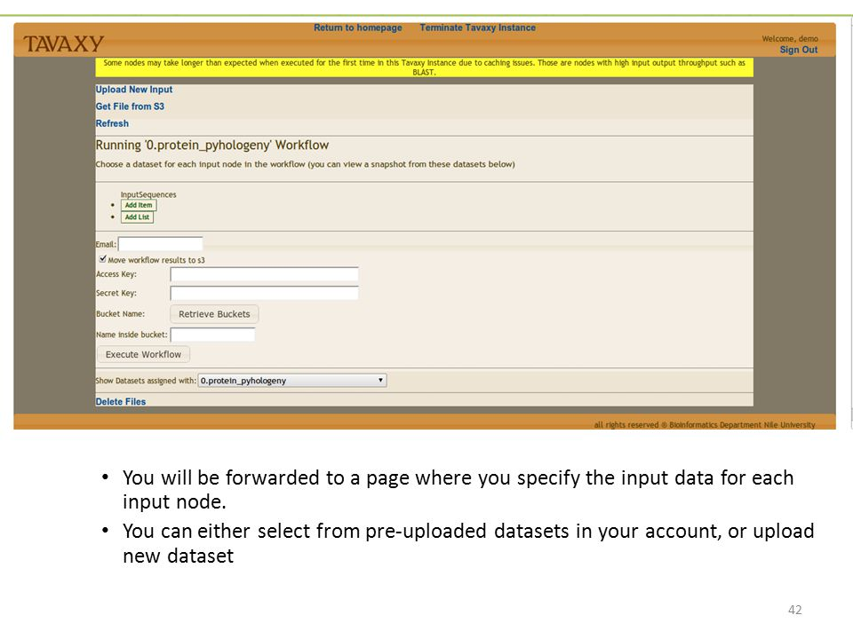 You will be forwarded to a page where you specify the input data for each input node.