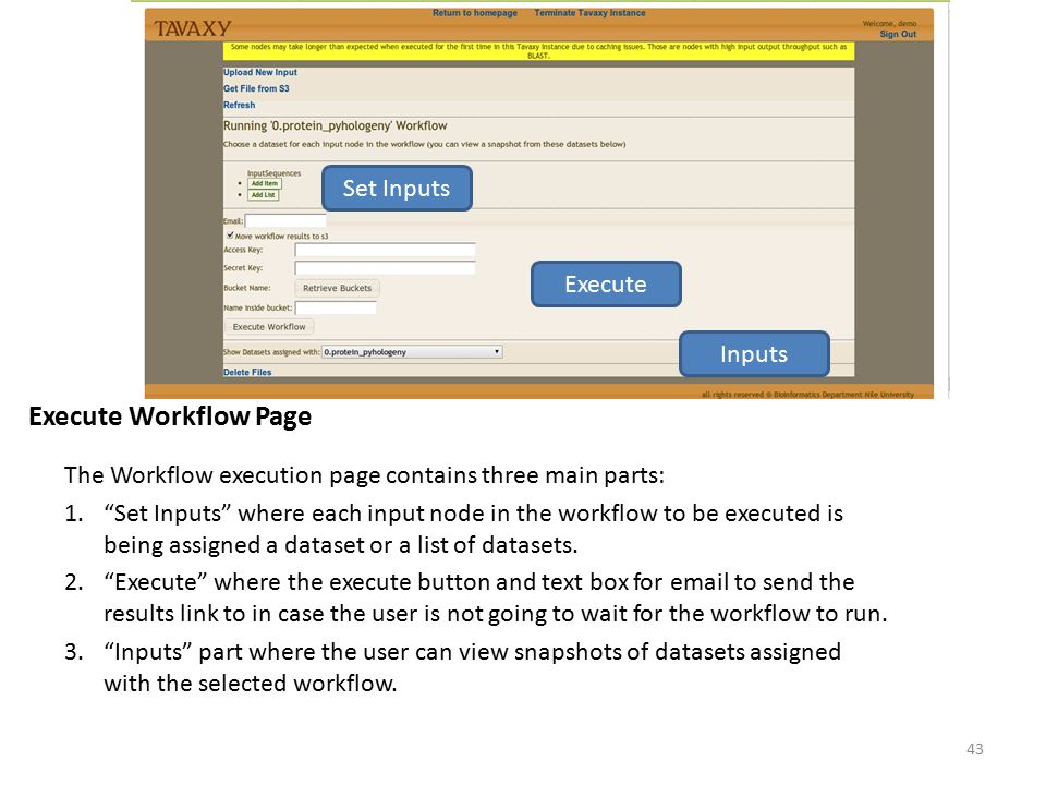 Execute Workflow Page Set Inputs Execute Inputs