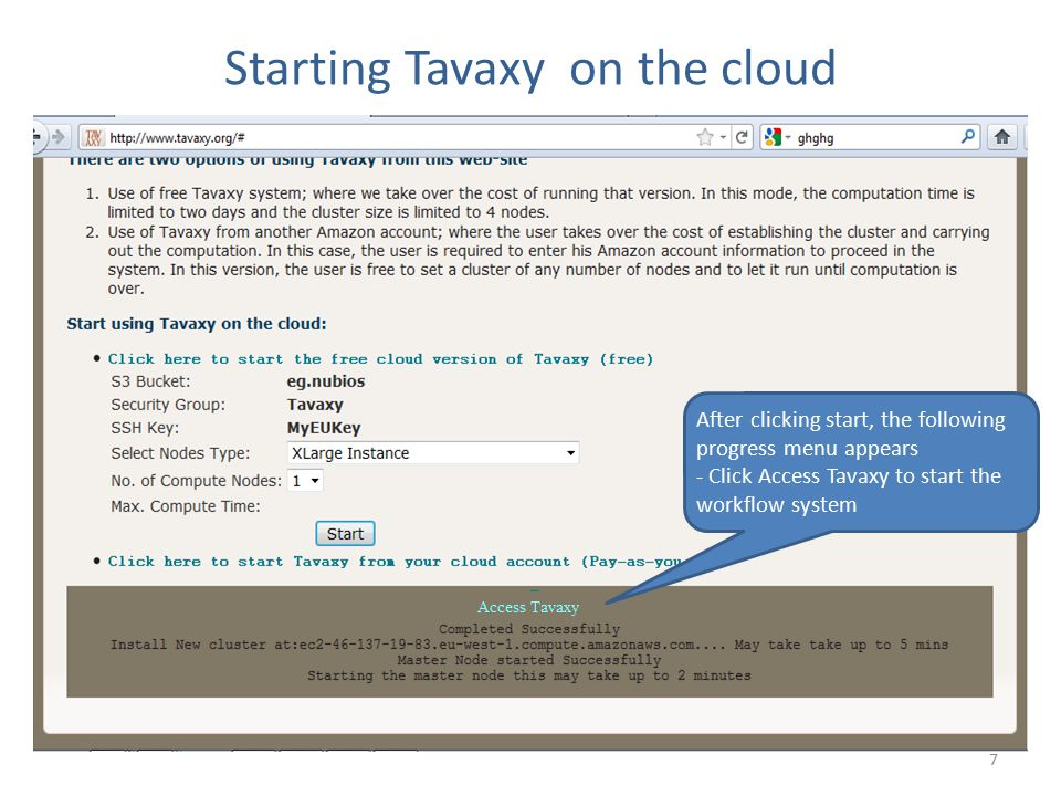 Starting Tavaxy on the cloud