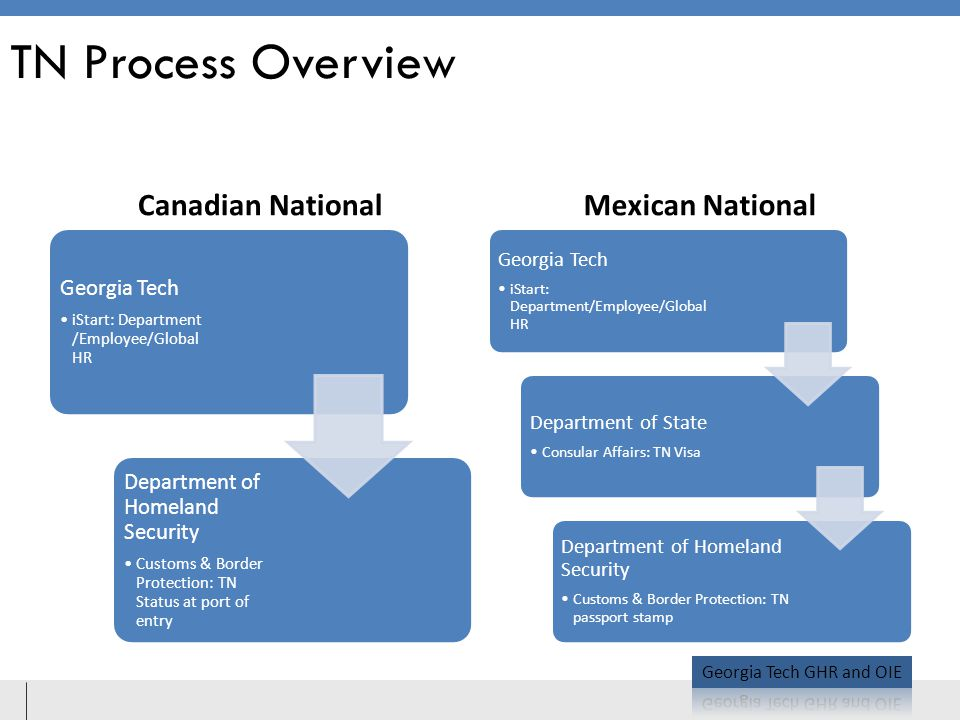 TN Process Overview Canadian National Mexican National Georgia Tech