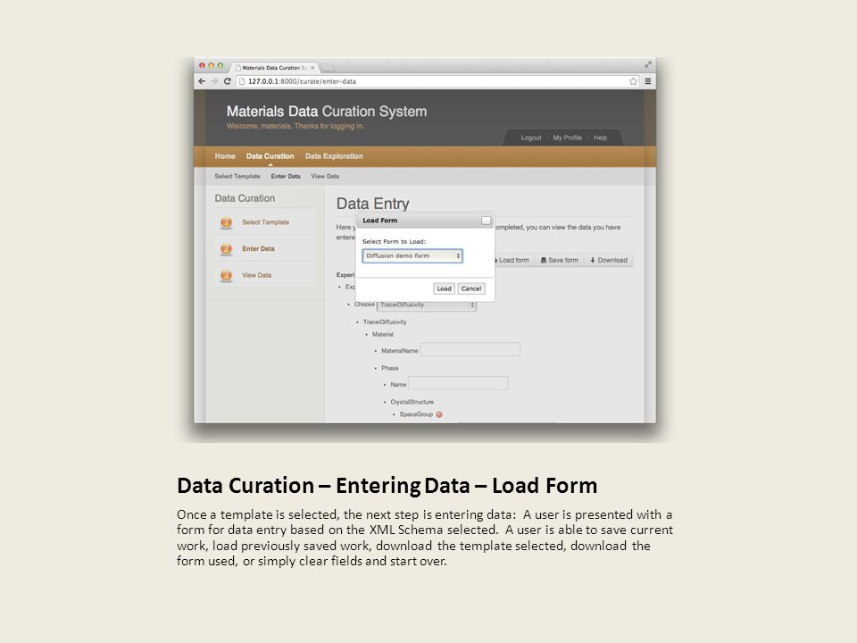 Data Curation – Entering Data – Load Form