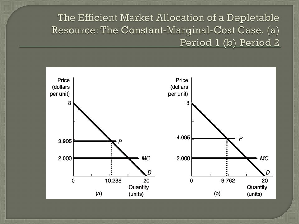 The Efficient Market Allocation of a Depletable Resource: The Constant-Marginal-Cost Case.