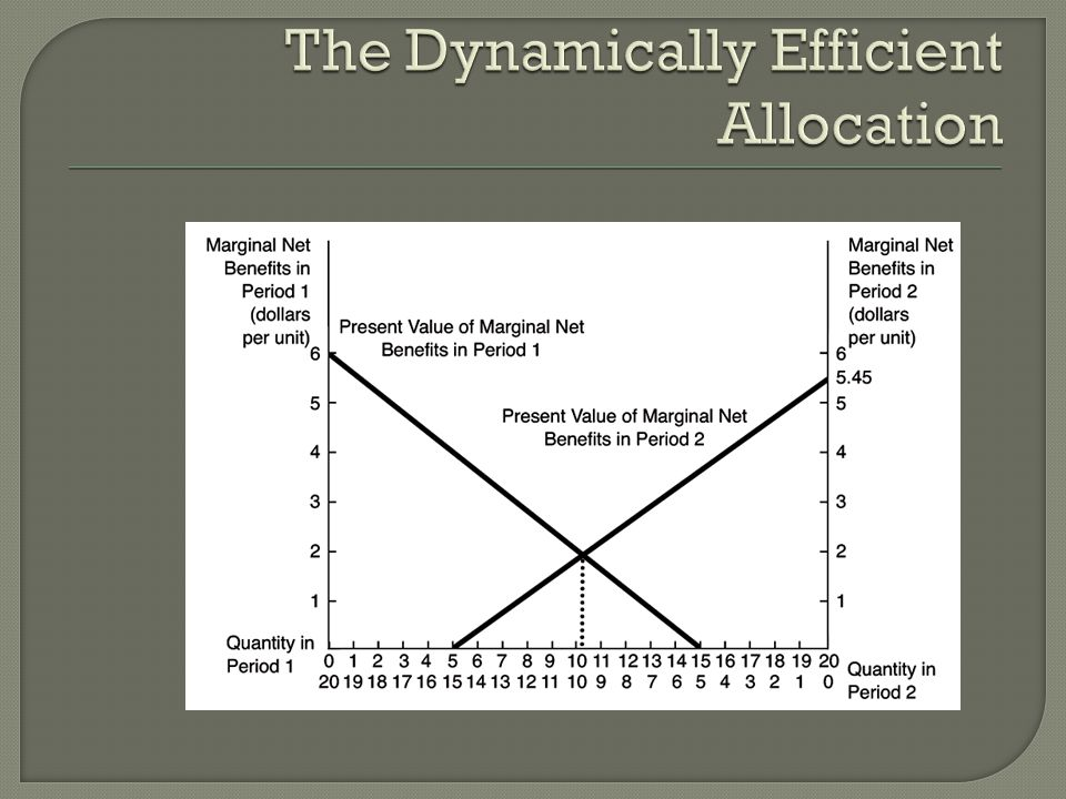 The Dynamically Efficient Allocation
